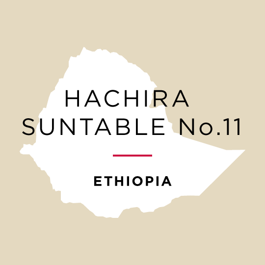 SOLD OUT - Ethiopia Hachira - Suntable No.11