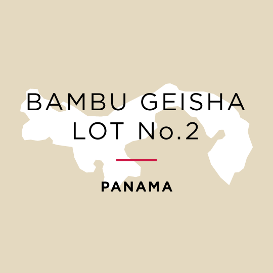 Winner *Best of Panama* Los Lajones Estate Bambu Geisha Natural - Auction Lot No.2