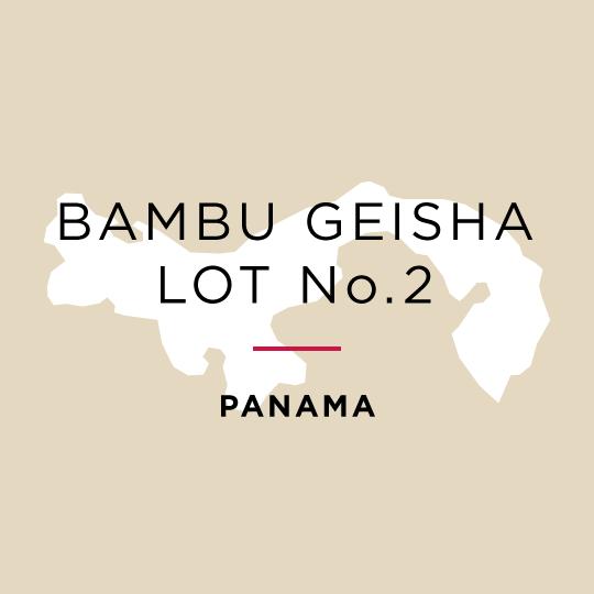 Winner *Best of Panama* Los Lajones Estate Bambu Geisha Natural - Auction Lot No.2