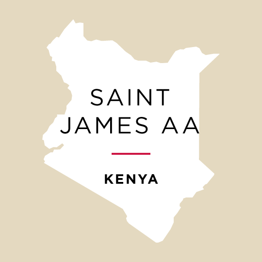 Kenya Saint James AA