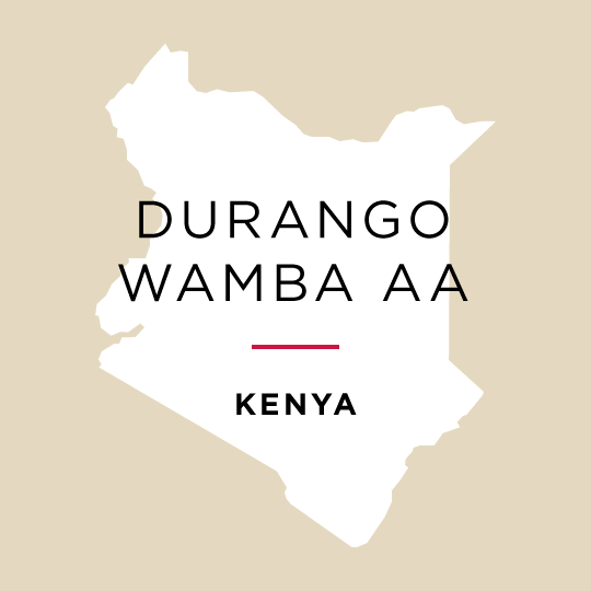 SOLD OUT - Kenya Durango Wamba AA