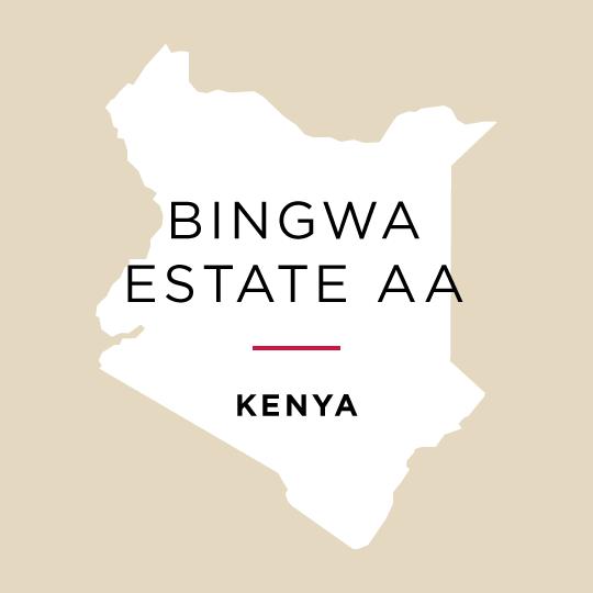 SOLD OUT - Kenya Bingwa Estate AA